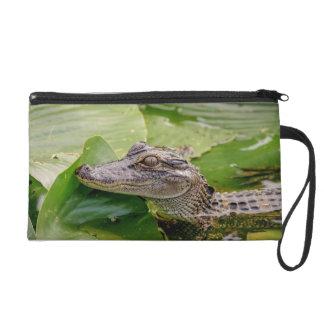 Young Alligator Wristlet