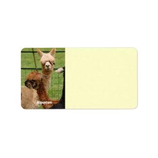 Young Alpacas Custom Address Label