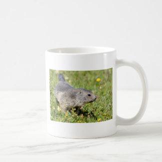 Young Alpine marmot in grass Mug