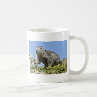 Young Alpine marmot Mug
