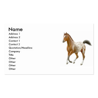 Young Appaloosa Horse Business Card