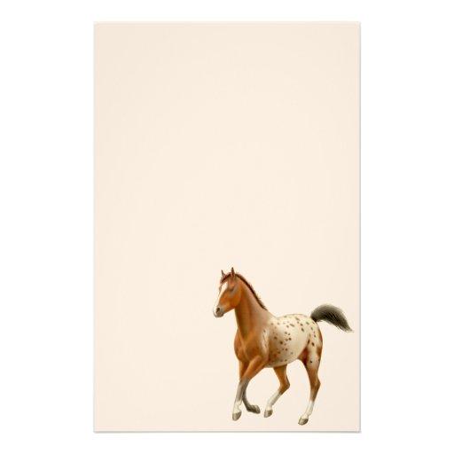 Young Appaloosa Horse Stationery