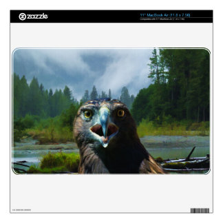 """Young Bald Eagle and Misty Alaskan River 11"""" MacBook Air Decal"""