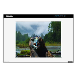 "Young Bald Eagle and Misty Alaskan River 12"" Laptop Decal"