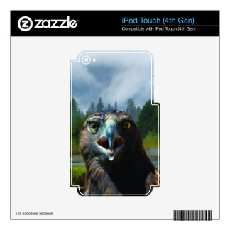 Young Bald Eagle and Misty Alaskan River iPod Touch 4G Decal