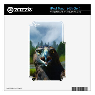 Young Bald Eagle and Misty Alaskan River iPod Touch 4G Skins