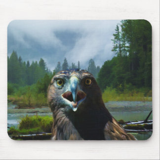 Young Bald Eagle and Misty Alaskan River Mouse Pad