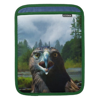 Young Bald Eagle and Misty Alaskan River Sleeve For iPads