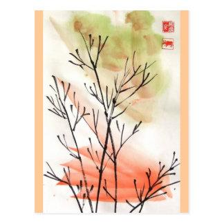 Young Bamboo Postcard