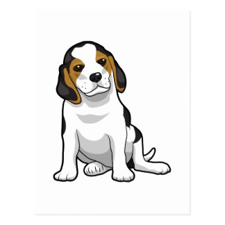Young Beagle Puppy Postcard