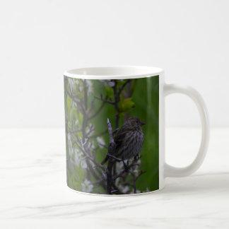 Young Bird in Spring Mug