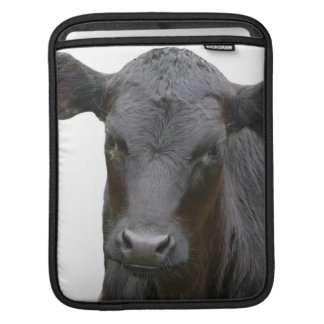 Young Black Angus Calf Sleeves For iPads