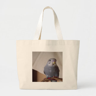 young blue budgie bag