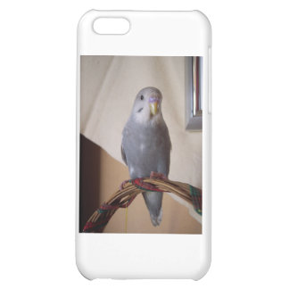 young blue budgie iPhone 5C covers