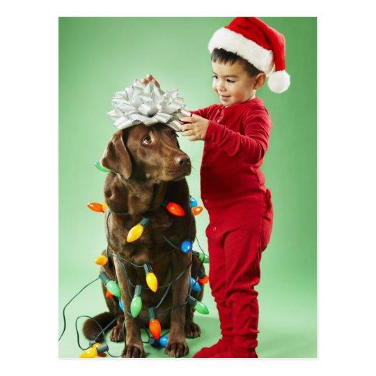 Young boy wrapping Christmas lights around a dog Postcard