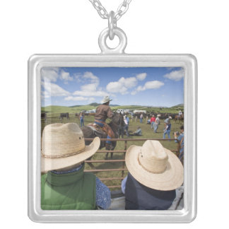 Young boys take in the 2007 Hughes Ranch Silver Plated Necklace