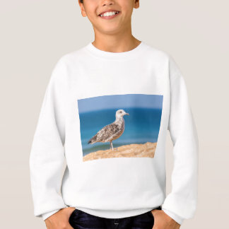 Young brown seagull on beach with sea.JPG Sweatshirt