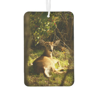 Young Buck In The Meadow Air Freshener