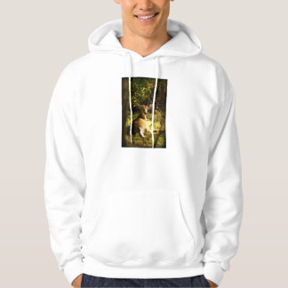 Young Buck In The Meadow Hoodie