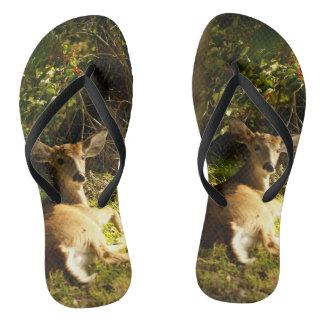 Young Buck in the Meadow Flip Flops