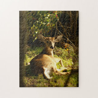 Young Buck in the Meadow Jigsaw Puzzle