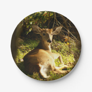 Young Buck in the Meadow Paper Plate