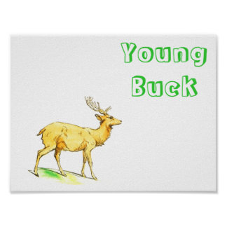 Young Buck Poster