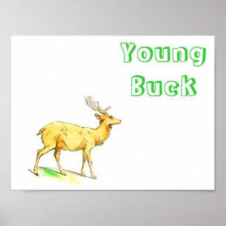 Young Buck Print