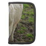 Young Bull at Water Hole Folio Planner
