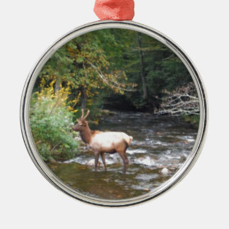 Young Bull  Elk in Velvet Antlers, Crossing Creek Metal Ornament