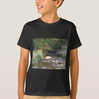 Young Bull  Elk in Velvet Antlers, Crossing Creek T-Shirt
