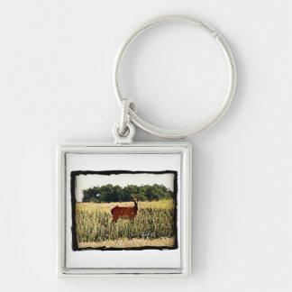Young Bull Elk Keychain