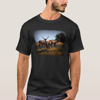 """Young Bulls"" - Elk T-Shirt"