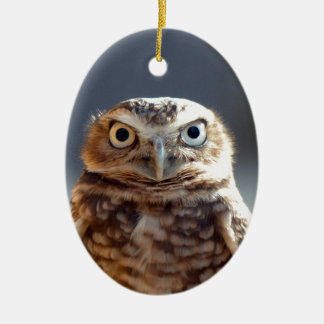 Young Burrowing Owl Ceramic Ornament