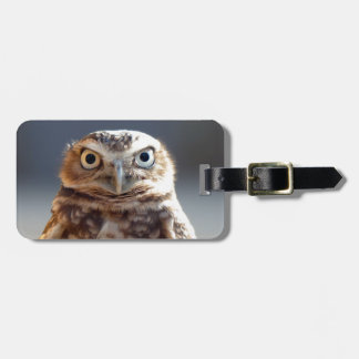 Young Burrowing Owl Luggage Tag