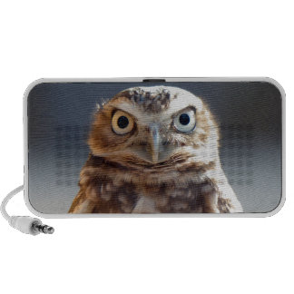 Young Burrowing Owl Laptop Speakers