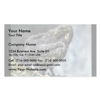 young California condor Business Card Template