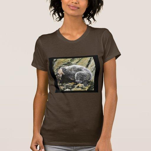 Young California condor Tshirt