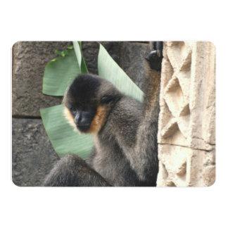 Young Capuchin Monkey 5x7 Paper Invitation Card