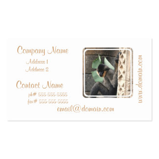 Young Capuchin Monkey Business Cards