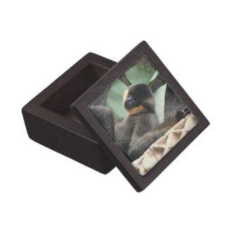 Young Capuchin Monkey Gift Box Premium Keepsake Box