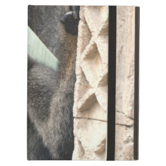 Young Capuchin Monkey iPad Air Covers