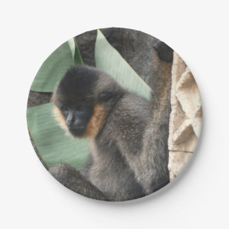Young Capuchin Monkey 7 Inch Paper Plate