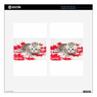 Young cat between red autumn leaves kindle fire skin