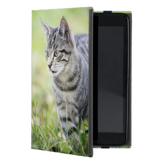 Young cat in nature cover for iPad mini