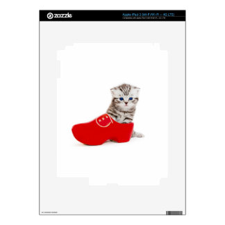 Young cat in red wooden shoe or clump iPad 3 decal