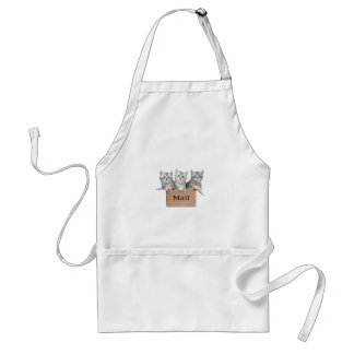 Young cats in cardboard box with word Mail Adult Apron