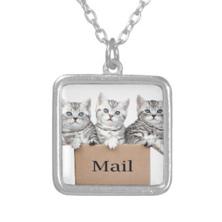Young cats in cardboard box with word Mail Silver Plated Necklace