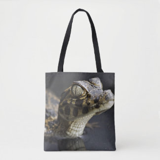 Young cayman in water with reflection tote bag