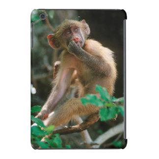 Young Chacma Baboon (Papio Ursinus) Sitting iPad Mini Covers